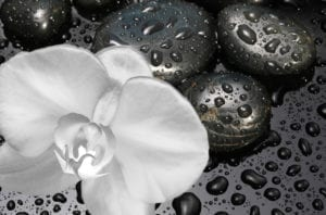 Holistic dentistry is about choosing what is natural for your body - Black stone with water drops