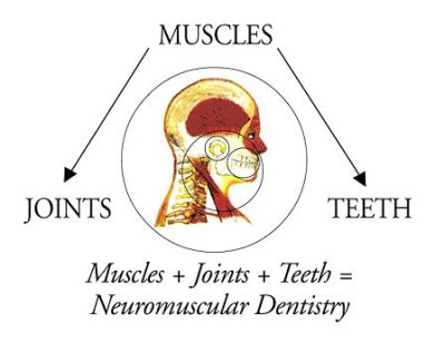 Illustration of how TMJ is affected by neuromuscular issues